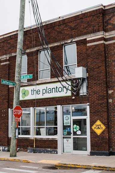 Plantory04.jpg