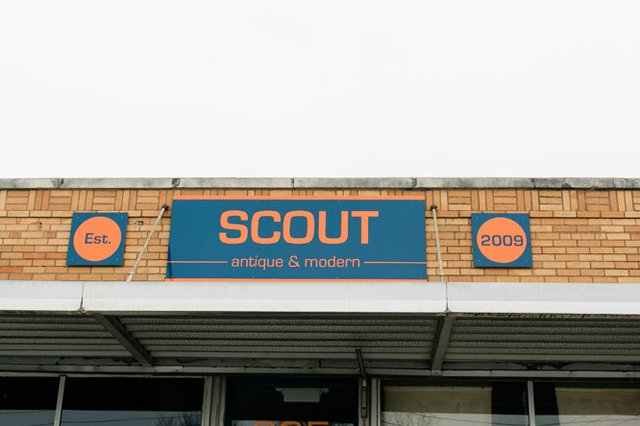 Scout (27 of 27).jpg