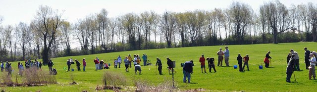 Reforest the Bluegrass webpage banner.jpg