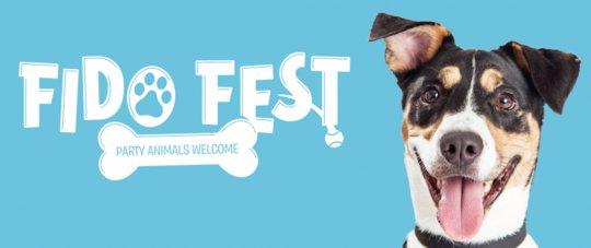 Fid Fest