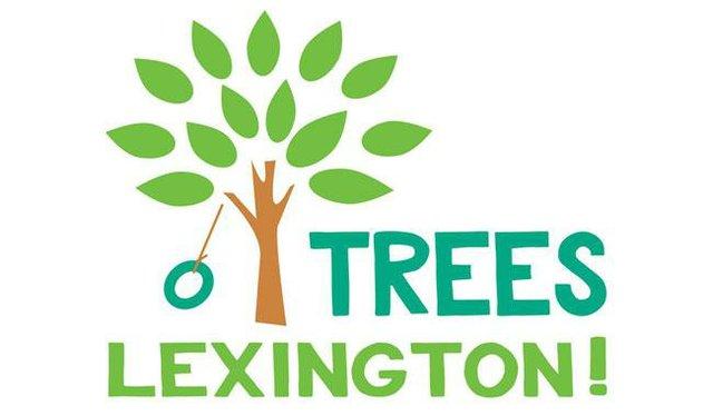 Trees Lexington!.jpg