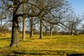 Woodford County--53.jpg