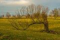 Woodford County-6.jpg