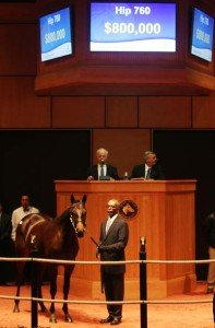 Fasig Tipton Yearling Sale
