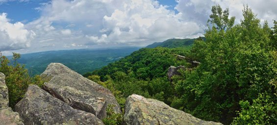 view fro mHigh Rock, Bad Branch State NAture PReserves : by Grg Abernathy