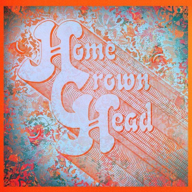 Homegrown_Head_Band__Owls.jpeg