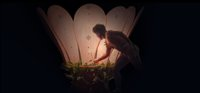 Lex Ballet Photo.jpg