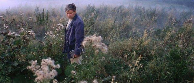 "Rosa Goddard International Film Festival ""Solaris"""