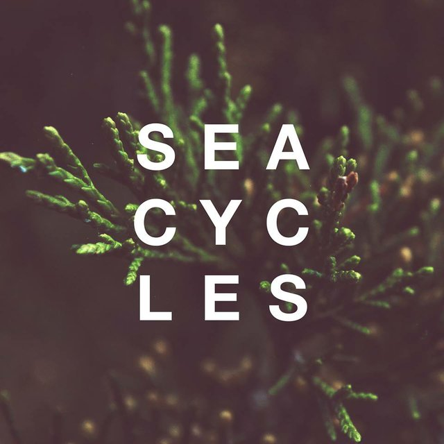 SHOZO/ Father Mountain/ Sea Cycles