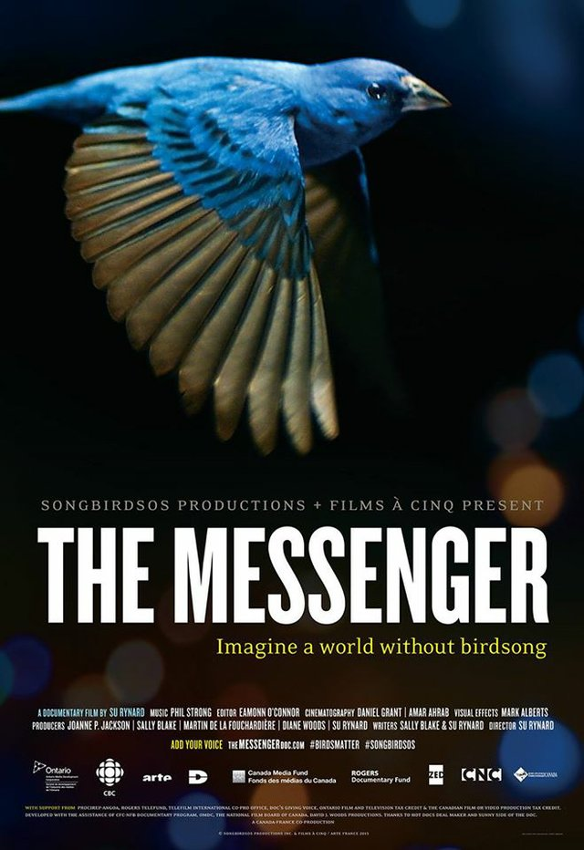 Bluegrass Earth Movie: The Messenger