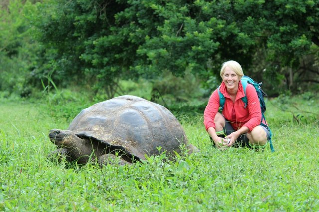 Janet Shedd and giant tortoise