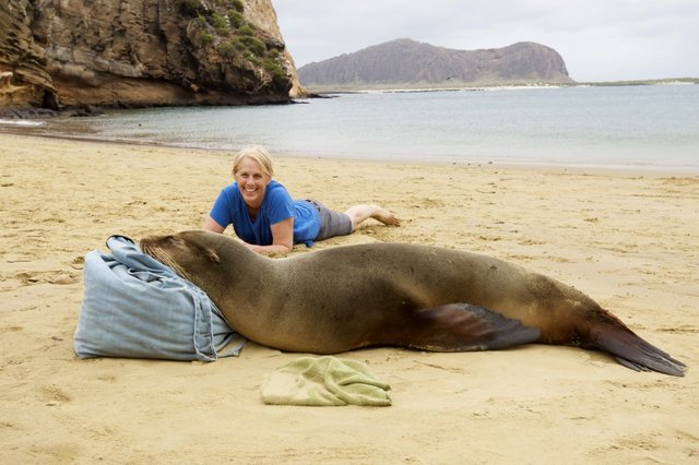 Janet Shedd and sea lion