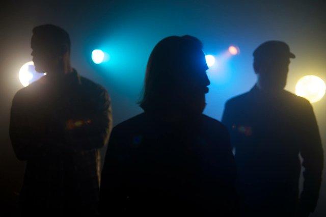 Dream The Electric Sleep/ Jandergan/ The Wild Jays