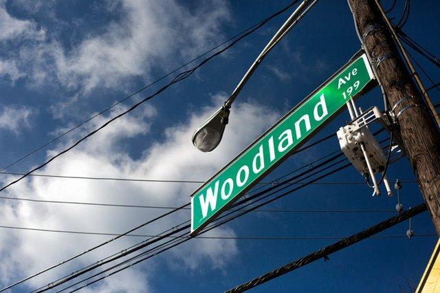 WOODLAND_TEASER.jpg