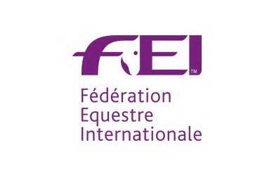 FEI logo 2