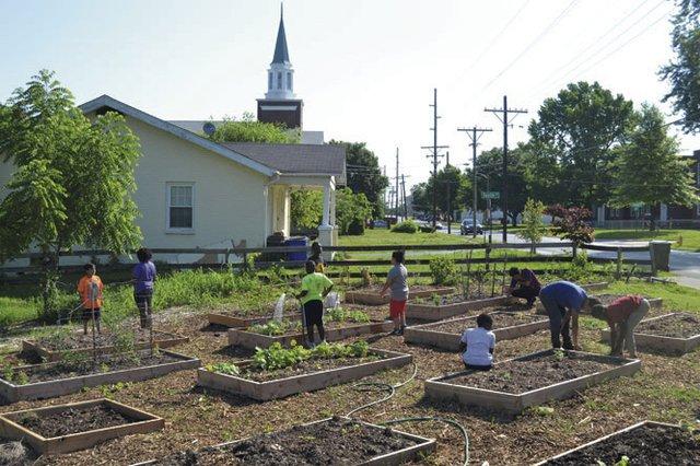 Seedleaf Urban Garden 2