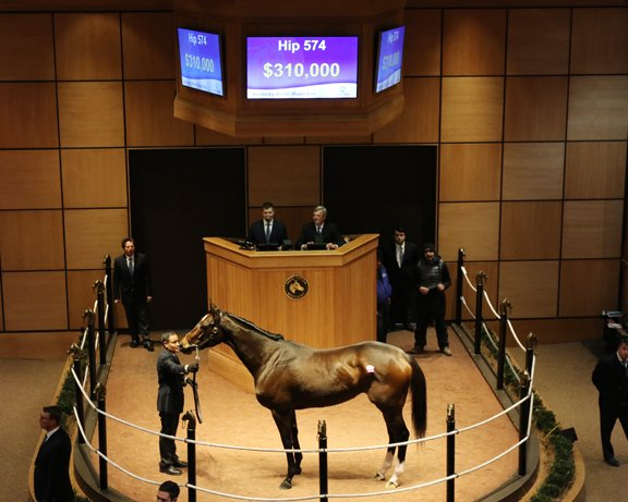 Fasig-Tipton_Winter 2018_Hip574.jpg