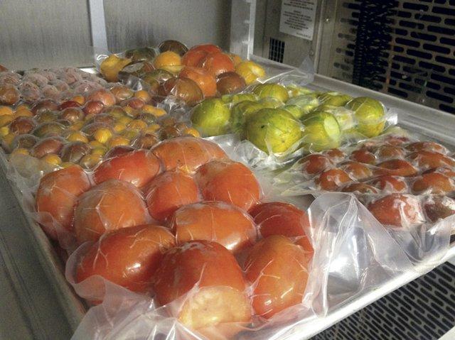 FoodChain frozen tomatoes.jpg