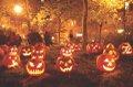 OCTOBER EDITION.jpg